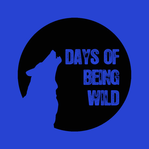 days of being wild heretic