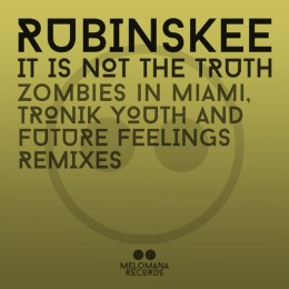It is not the truth - Tronik Youth Remix
