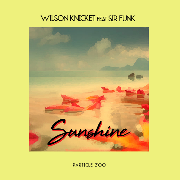 Wilson Knick-It - Sunshine cover art